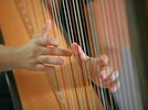 South Africa harp luthier