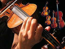 South Africa violin luthier directory